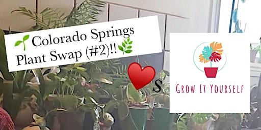 Colorado Springs Plant Swap (#2)!!