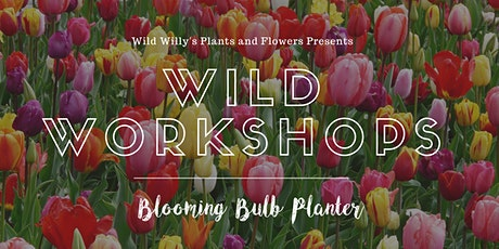 WILD Workshops: Blooming Bulb Planter (Sunday) tickets