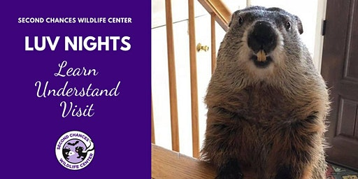LUV Night Wildlife Encounter - Feb. 15, 2020