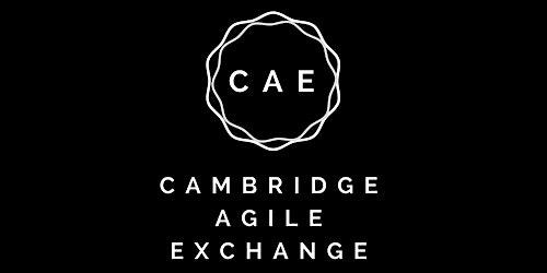 Cambridge Agile Exchange - I'm a failure and so are you