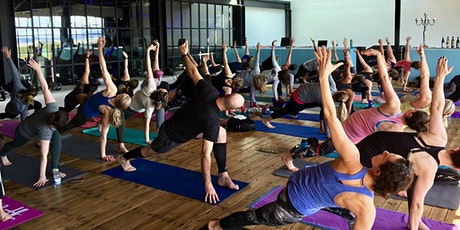 Wine + Yoga at Nine Hats Wines   tickets