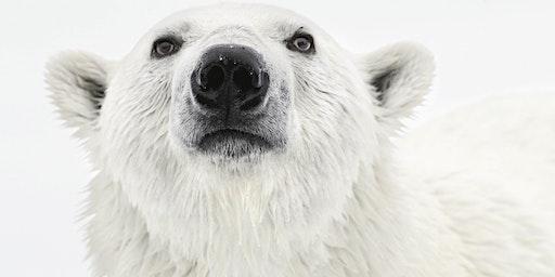 Free Seminar - Arctic Expedition Cruising with Adventure Canada