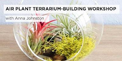 Air Plant Terrarium Building Workshop