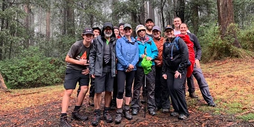 FREE Trek Tanglefoot Track, Toolangi, Sunday 26th April, 2020