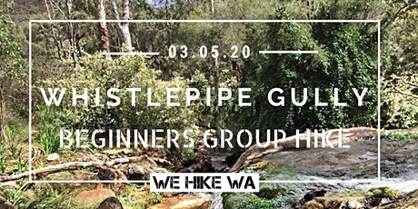 Beginners Group Hike: Whistlepipe Gully  tickets