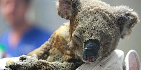 Help save injured animals  tickets