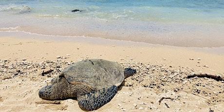 Maui Hawaii Yoga and Healing Retreat tickets