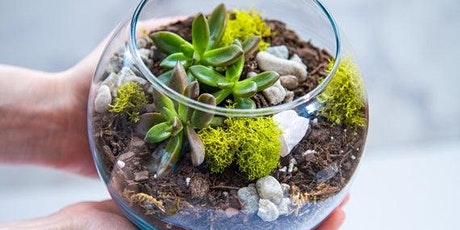 Sassy Succulent Night 2 Terrarium Style at Sandy Springs tickets