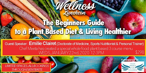 Beginners Guide To A Plant Based Diet