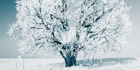 Winter Stillness: Deep Nourishment for Body, Mind and Heart tickets