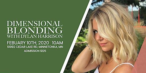 Dimensional Blonding W/ Dylan Harrison