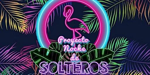 Proyecto Noche De Solteros