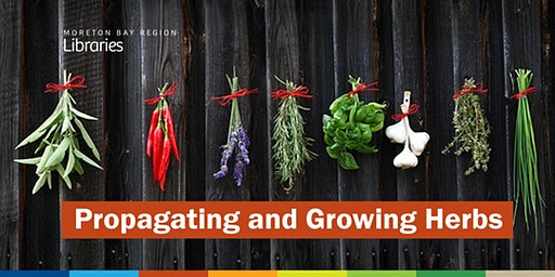 Propagating and Growing Herbs - Caboolture Library