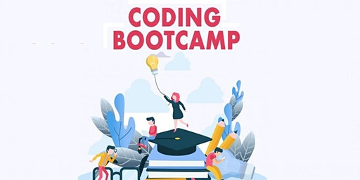 4 Weeks Coding bootcamp in Joliet | learn c# (c sharp), .net training