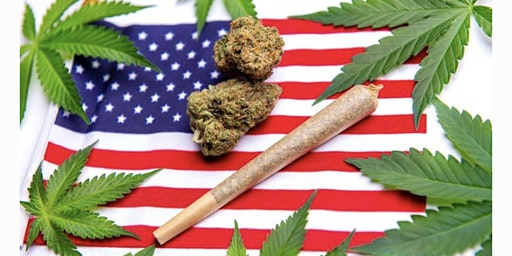 How to Make Money in the Virginia Legal Cannabis Industry