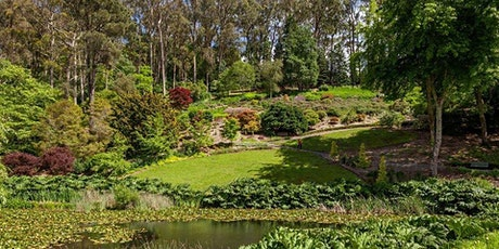 Social group Walk and Talk in Mount Lofty Botanic Gardens  -1 hour tickets