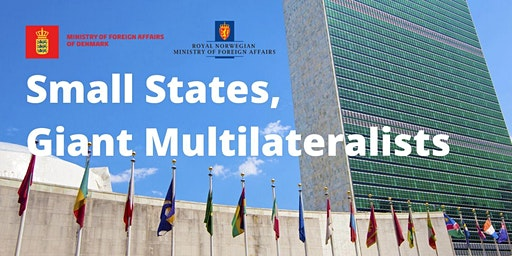 Small States, Giant Multilateralists