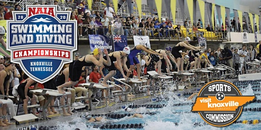 2020 NAIA Swimming and Diving Championships