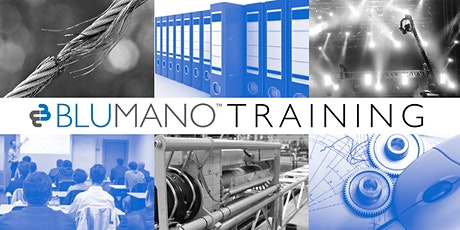 Scenic Motion Risk Assessment for stage machinery: MD 2006/42/EC, EN ISO 12100:2010 tickets