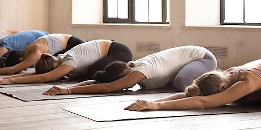 CAA Day at Modo Yoga