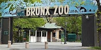 Bronx Zoo Bus Trip