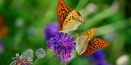 Gardening for Pollinators tickets