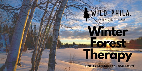 Winter Forest Therapy tickets