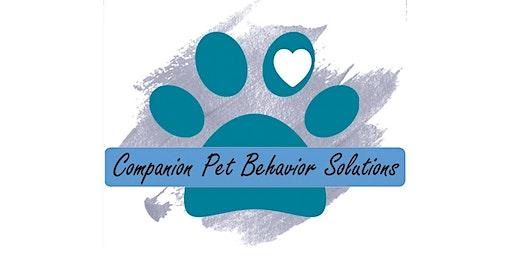 Enrichment Workshop for Your Pet