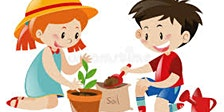 Plant a seed for spring