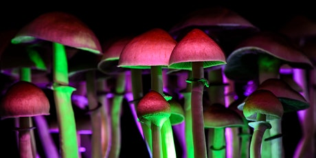 FOR THE LOVE OF MUSHROOMS – a talk on the nature & history of psychedelics tickets