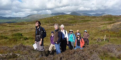 Rusland Horizons Greenwood Trail Guided Walk