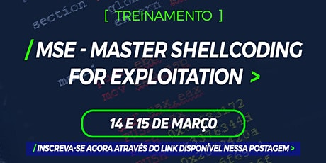 MSE - Master Shellcoding for Exploitation ingressos