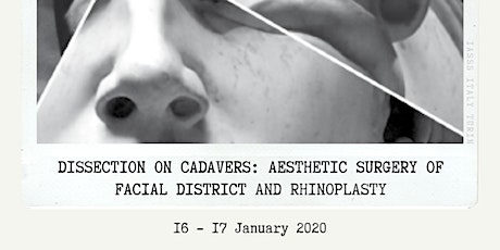 AESTHETIC SURGERY OF FACIAL DISTRICT AND RHINOPLASTY for Medstu by IASSS biglietti