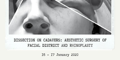 AESTHETIC SURGERY OF FACIAL DISTRICT AND RHINOPLASTY for Medstu by IASSS