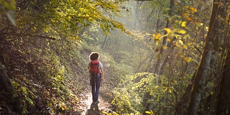 Forest Therapy: The Healing Power of Nature bilhetes