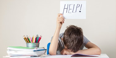 Executive Functioning  From Problems to Solutions