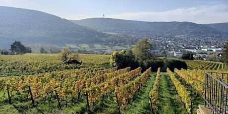 German 101 Wine Tasting tickets