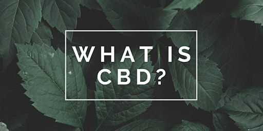 What Is CBD? | FREE WORKSHOP