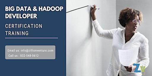Big Data and Hadoop Developer Certification Training in Lubbock, TX
