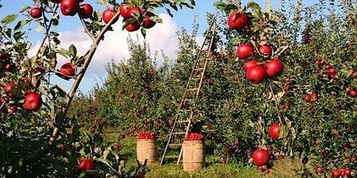 Agro Entrepreneurship & Market Facilitation