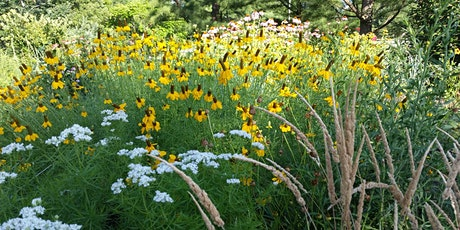 Partners for Native Landscaping Workshop for Homeowners tickets