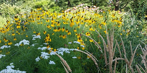 Partners for Native Landscaping Workshop for Homeowners