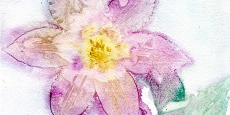 Botanical Watercolor Sun Prints Workshop tickets