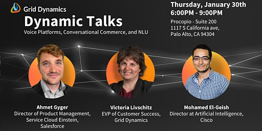"Dynamic Talks Silicon Valley: ""Voice Platforms, Conversational Commerce, and NLU"""