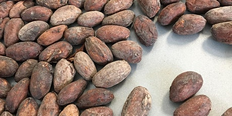 Transforming the Cacao Bean tickets