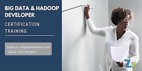 Big Data and Hadoop Developer Certification Training in Waterloo, ON tickets