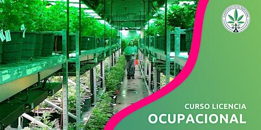 Curso Licencia Ocupacional (San Juan)