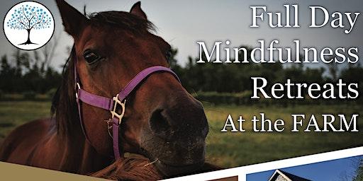 Full Day Mindfulness Retreats
