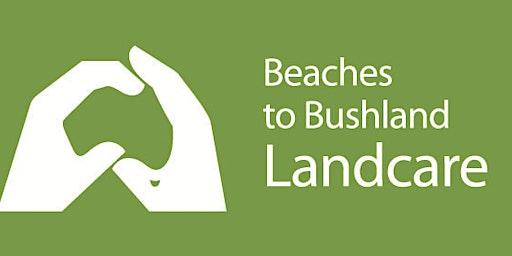 Hinterland Regional Park Bushcare Group
