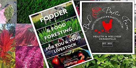 Fodder & Food Foresting (for you & your livestock) tickets